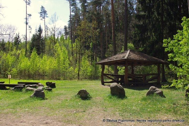 "Holiday resort ""Paneriai forest reggae"""